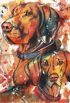 Here is a watercolour painting I did of two Hungarian Vizlas, Dude (3) and Daisy (1). I used mixed media, a combination of watercolour and fineliner, to create this painting. For more work please visit my website at www.toriratcliffe-art.co.uk or search Tori Ratcliffe Art on Facebook!