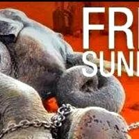 Please sign and share, we must get Sunder freed.  5/14