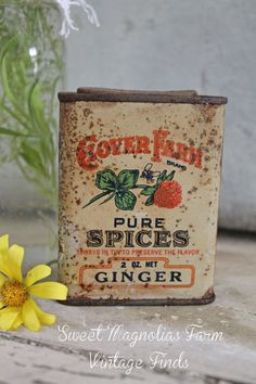 "Vintage Spice Tin ""Clover Farm Pure Spices - Ginger ""Clover Farm Stores""  Bee and Red Clover - Farmhouse Kitchen Charm - Baking Cooking $18.50"