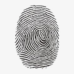 Fingerprint Csi Crime Scene Framed Art Print by Doorman - Vector Black - Free Vector Illustration, Free Vector Art, Art Plastic, Fingerprint Art, Identity Art, Personal Identity, Clipart, Graphic Design, Human Body