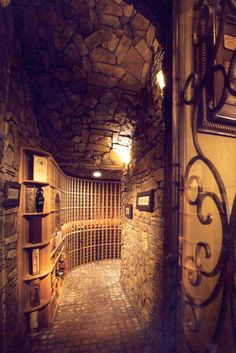 I would love this in my basement - a secret passageway. Full of wine. :-)