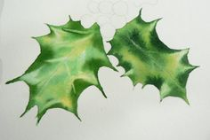 Painting Holly Leaves in Watercolor                                                                                                                                                                                 More