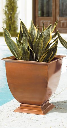 These All-Weather Footed Outdoor Planters are impeccably hand-patterned from solid, rust-free stainless steel. Burnished with a copper finish that will weather gracefully to a rich patina with time, these decorative urns showcase seasonal blossoms in distinctive style.