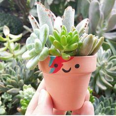 Such an adorable little David Bowie pot! Fantastic idea