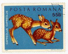 Romania 0910 m Bambi, Vintage Stamps, Baby Deer, Penny Black, Mail Art, Stamp Collecting, Digital Stamps, Book Illustration, Vintage Books