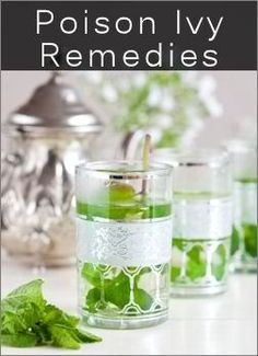 14 Home Remedies For Poison Ivy