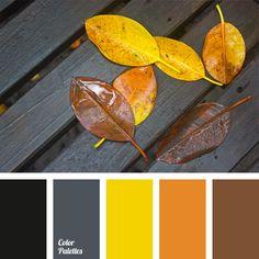 Color Palette #995