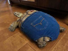 "29 Chonky Bois That Definitely Qualify As Absolute Units - Funny memes that ""GET IT"" and want you to too. Get the latest funniest memes and keep up what is going on in the meme-o-sphere. Animals And Pets, Baby Animals, Post Animal, Cute Turtles, Tortoises, Cute Funny Animals, Animal Memes, Funny Photos, Tortoise House"