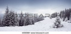 """""""Stock Photography of Winter trees"""" - Winter stock photos available at Fotosearch.com"""