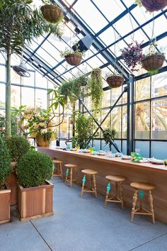 word is out on Roy Choi's rooftop greenhouse restaurant Commissary. Commissary restaurant by Roy Choi+ Diego Echevarria. Los AngelesCommissary restaurant by Roy Choi+ Diego Echevarria.