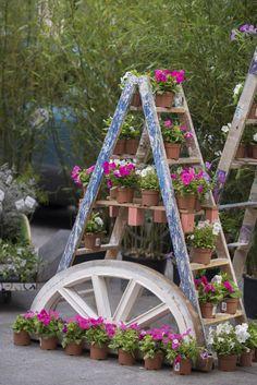 Una forma original de tener tus flores en tu terraza o jardín es utilizar una escalera de tijera de las de los pintores. ¿A que es chulo?