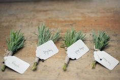 rosemary boutonniere - Google Search