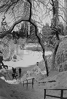 Alfred Eisenstaedt, Scene with Stairs, Central Park, New York, 1959