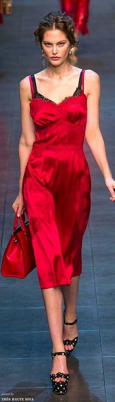 Dolce & Gabbana Spring 2014 RTW