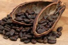 Could cocoa bean magnates be up to something no good?
