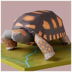 Free 3d papercraft a Yellow Footed Tortoise download - this site has animals motorcycle realistic, also some pop-up greeting cards