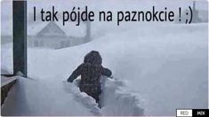 Funny Images, Funny Pictures, Dark Net, Polish Memes, Funny Mems, Keep Smiling, Great Words, Winter Wonderland, I Laughed