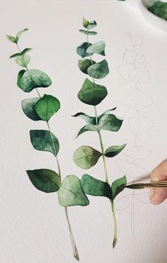 I painted dry flower eucalyptus . Watercolor Leaves, Watercolor Drawing, Watercolor Illustration, Painting & Drawing, Watercolour Tutorials, Watercolor Techniques, Painting Inspiration, Art Inspo, Botanical Art