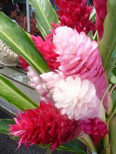 Come visit the Pananga Nui Market in Rarotonga