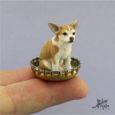 "Dollhouse Miniature Chihuahua ""Buck"" - sculpture of BeeSputty clay, paint & natural fibers & flock."