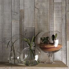 Make look alikes for only $2! http://www.thebudgetdecorator.com/westelm-fishbowl-remake.html