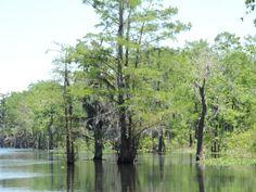 Spillway in Louisiana