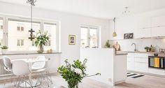 Renovation ecologique appartement et maison a paris
