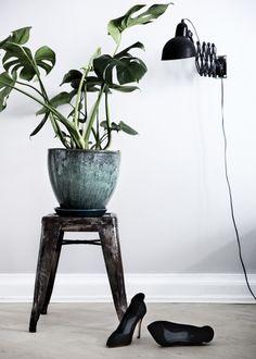 monstera by Yvonne Kone Interior Plants, Interior And Exterior, Indoor Garden, Indoor Plants, Interior Inspiration, Design Inspiration, Garden Shop, Green Plants, My Living Room