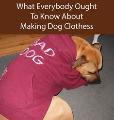 Check out these step by step instructions about how to make DIY dog clothes. Make one of these dog coats and have your dog looking smart and feeling warm in all seasons Dog Hoodie, Dog Shirt, Pet Clothes, Dog Clothing, Dog Furniture, Dog Clothes Patterns, Dog Crafts, Dog Items, Dog Sweaters
