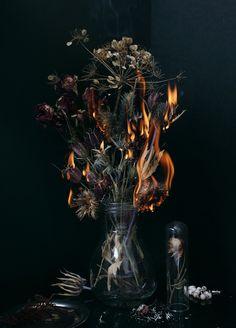 Vanités project by Jeanne-Rose