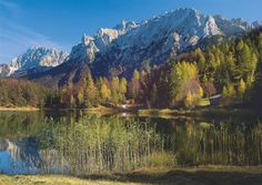 """Paradiesische Parks, zauberhafte Flusslandschaften, Traumstrände und Gipfelglück – das Buch """"Deutschland – 500 Orte, die Sie erleben sollten"""" stellt die besten Ausflugsziele in der Nähe vor. Wir zeigen 16 Highlights aus der Sparte """"Naturerlebnisse"""", eins aus jedem Bundesland."""