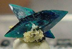 Veszelyite | Black Pine Mine, Phillipsburg, Montana, US / Mineral Friends <3