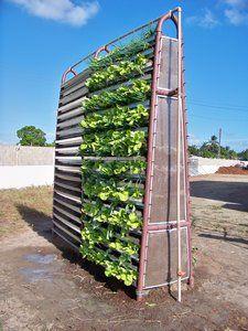 Babylon Garden   Vegetative module   Beitragsdetails   iF ONLINE EXHIBITION