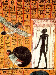 tumba Arinefer #Egypt