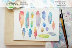 Watercolor feathers by NinaDolgopolova on Creative Market