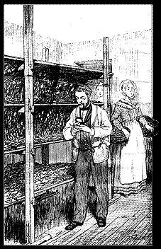 """Louis PASTEUR dans une magnanerie (Réf : """"Pasteur"""" Pierre LEMOYNE - Abbeville C. Paillart, Imprimeur)."""