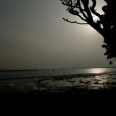 Chichester Harbour Chichester, Celestial, Sunset, Places, Outdoor, Beautiful, Outdoors, Sunsets, Lugares