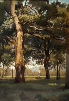 Fanny Churberg, Finnish The Old Oak Tree 1872 Helene Schjerfbeck, Chur, Landscape Art, Landscape Paintings, Oil Paintings, Scandinavian Paintings, Female Painters, Old Oak Tree, Amazing Paintings