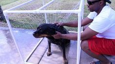 easy diy pvc outdoor dog shower
