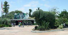 Balboa Park San Diego Zoo | the world famoussan diego zoo