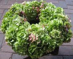 bloemstukken met hortensia - Google zoeken