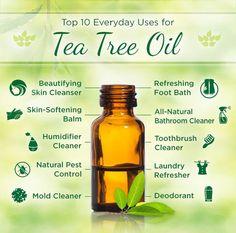 Amazing health benefits of Tea Tree Oil!