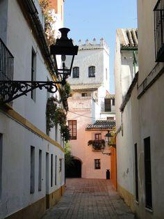 Sevilla. Barrio de Santa Cruz y el resto de la antigua judería