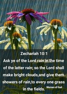 Zechariah 10:1