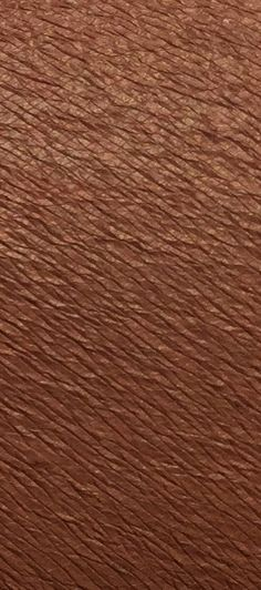 Matte Liquid Lipstick – Violet Voss Cosmetics