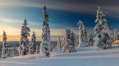 Winter Scene (Finland) by Jari Ehrström on 500px