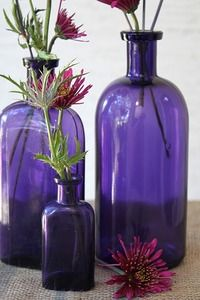 Purple Vases & Flowers