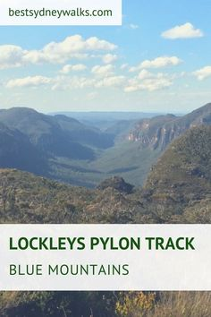 The Lockleys Pylon walking track is an exciting bushwalk in the Blue Mountains offering scenic views of the surrounding valleys and canyons Australian Holidays, Australia Tourism, Go Hiking, Weekends Away, Blue Mountain, Great View, Day Trip, National Parks, Track