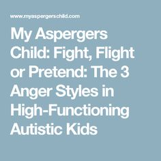 My Aspergers Child: Fight, Flight or Pretend: The 3 Anger Styles in High-Functioning Autistic Kids