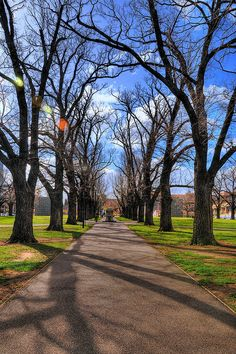 University of Melbourne: University Square by SSNNYY, via Flickr